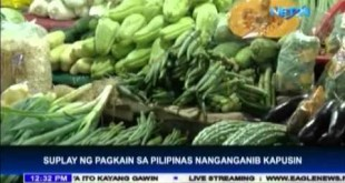 Philippine in danger of food shortage