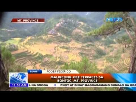 Maligcong Rice Terraces sa Bontoc, Mt. Province