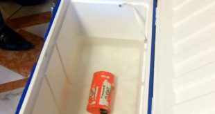 Investigators begin examining EgyptAir black boxes