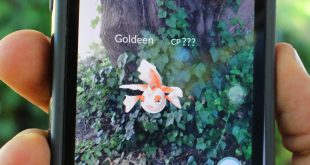 Pokemon Go craze crashes Aussie servers, draws police warnings