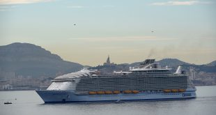 Human error likely caused cruise ship death: French prosecuto