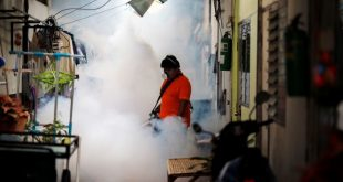 Thailand rules out Zika link in two microcephaly cases; investigating two