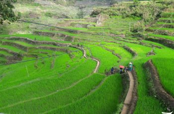 Featured Photos: Maligcong, Bontoc, Mountain Province