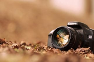 So, you want to be a photographer
