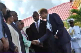 PRINCE HARRY SHAKING HANDS WITH SPECTATORS AND FANS (Photo courtesy of Reuters video file)