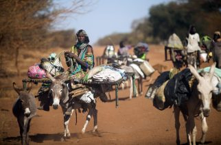 (FILES) A woman rides a donkey as nomad families from the Misseryia area in Abyei region migrate from north on December 18, 2016.  The beginning of the dry season make this community move to the south, mostly populated by the Dinka tribe. The Abyei Administrative Area is a disputed territory between Sudan and South Sudan with a longstanding intercommunal tensions between the Ngok-Dinka ethnic majority and the pastoral Misseriya population, who migrate through the area seasonally from the north. / AFP PHOTO / Albert Gonzalez Farran