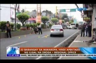22 barangay sa Mimaropa, hindi apektado ng iligal na droga – Regional Office