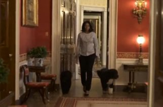 The White House releases video of first lady Michelle Obama strolling for the last time through the presidential mansion with the family's two Portuguese Water Dogs, Sunny and Bo.
