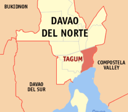 Tagum streamlines business permit processing