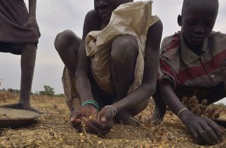 "Children gather grain spilled from bags busted open following a food-drop on February 24, 2015 at a village in Nyal, Panyijar county, near the northern border with Sudan. Isolated by the Sudd, the world's largest marsh area, Nyal's population is relatively protected from the war that ravaged South Sudan but starving and exposed to disease. Almost all Panyijar County, that counts about 60,000 people, depends on food aid parachuted by the World Food Programme (WFP) says local Prefet Tap Puot John, a member of the ""opposition"" whose troops fighting the government army since December 2013 control the area. AFP PHOTO/TONY KARUMBA / AFP PHOTO / TONY KARUMBA"