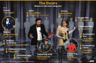 The Oscars: Winners in Main Categories