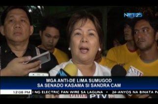 Sandra Cam: De Lima should be detained in regular jail
