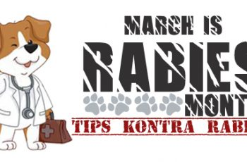 Rabies Month