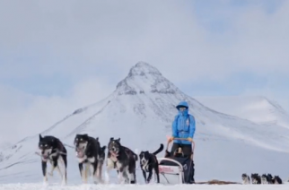 Almost 30 people complete a 300-kilometre expedition across the Arctic wilderness as they complete the Fjallraven Polar 2017 - a dog-sledding expedition from Signaldalen, Norway to Jukkasjarvi, Sweden.(photo grabbed from Reuters video)
