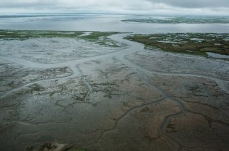 FILE PHOTO: NEWTOK, AK - JULY 06: The marshy, tundra landscape surrounding Newtok is seen from a plane on July 6, 2015 outside Newtok, Alaska. Newtok, which has a population of approximately of 375 ethnically Yupik people, was established along the shores of the Ninglick River, near where the river meets the Bering Sea, by the Bureau of Indian Affairs (BIA) in 1959. The Yupik people have lived on the coastal lands along the Bering Sea for thousands of years. However, as global temperatures rise the village is being threatened by the melting of permafrost; greater ice and snow melt - which is causing the Ninglick river to widen and erode the river bank; and larger storms that come in from the Bering Sea, which further erodes the land. According to the U.S. Army Corp of Engineers, the high point in Newtok - the school - could be underwater by 2017. A new village, approximately nine miles away titled Mertarvik, has been established, though so far families have been slow to relocate to the new village.   Andrew Burton/Getty Images/AFP