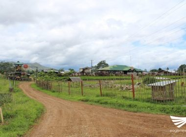 Tatlong miyembro ng NPA, sumuko sa 8th Infantry Battalion