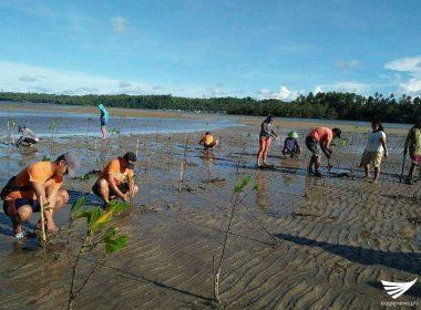 Mangrove planting, isinagawa ng mga miyembro ng Coast Guard, CENRO sa Bislig