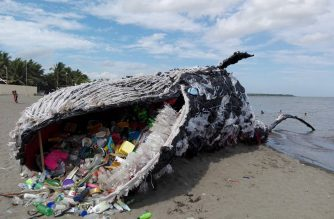 "The ""dead whale"" on the shores of Naic, Cavite. The prototype was created to send a strong message to the public about the detrimental effects of water pollution on sea creatures. Photo courtesy of Vince Cinches/ Greenpeace Philippines."