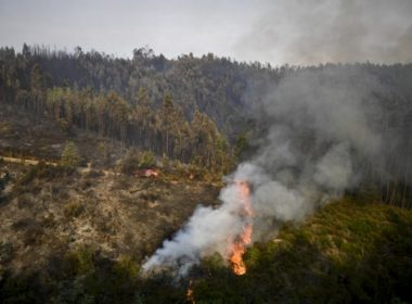 A wildfire burns a forest area in Castanheira de Pera on June 19, 2017. More than 1,000 firefighters are still trying to control the huge forest fire that erupted on June 17, 2017 in central Portugal killing at least 62 people and injuring 62 more, many trapped in their cars by the flames, causing a great deal of emotion in the country.    / AFP PHOTO / PATRICIA DE MELO MOREIRA