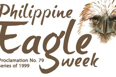 Philippine Eagle week
