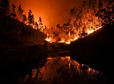 Some 60 forest fires have broken out across Portugal with around 1,700 firefighters battling to extinguish them. AFP / Patricia de Melo Moreira