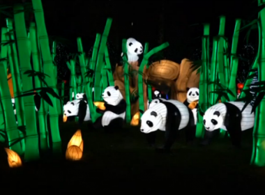 A traditional Chinese lantern show has been gloriously brightens up the night sky at a park in the German City of Hamburg. Photo grabbed from Reuters video file.
