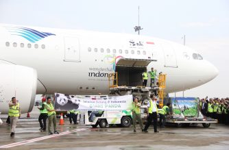 This handout photo from the Garuda Indonesia shows Indonesian officers welcome two giant pandas (R inside the cages) as they arrive at the Sukarno-Hatta airport in Tangerang, on the outskirt of Jakarta on September 28, 2017. Two giant pandas from China arrived in Indonesia on September 28, as part of the two countries' diplomacy to lend the animals to Indonesia. / AFP PHOTO /