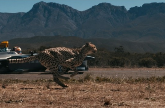 The cheetah is renowned for being the world's fastest mammal but is also one of its most endangered species.(photo grabbed from Reuters video)