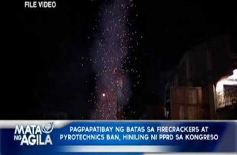 Roque: President Duterte to ask Congress to enact law banning firecrackers, pyrotechnics