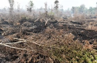 A general view shows fire damaged forest and peatlands, surrounding Palangkaraya city, in Central Kalimantan on October 30, 2015. Desperate civilians at the epicentre of Indonesia's haze crisis are taking the fight into their own hands, using whatever meagre resources they have to confront the fires ravaging their communities as they tire of waiting for the government to take action. AFP PHOTO / Bay ISMOYO / AFP PHOTO / BAY ISMOYO