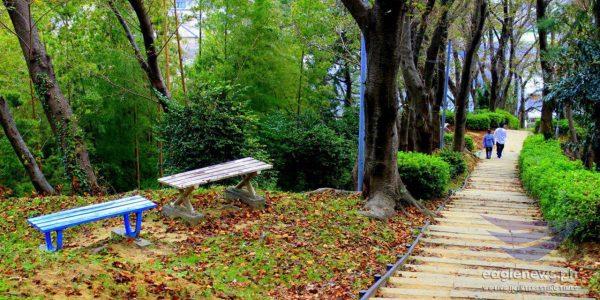 #EBCphotography:  A mountain park in Shizuoka City in Japan