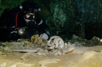 """This Handout picture released by Mexico's National Institute of Anthropology (INAH) on February 19, 2018, shows the """"remains of pleistocene bear"""" in the """"Gran aquifer"""" of Sac Actun in Quinta Roo state, Mexico.  In the aqueous system of Sac Actun it is documented the presence of more than 200 cenotes containing a similar number of archaeological contexts of the Pleistocene extinct fauna bones, reported the dependence. / AFP PHOTO / INAH / HO / RESTRICTED TO EDITORIAL USE - MANDATORY CREDIT """"AFP PHOTO / INAH"""" - NO MARKETING NO ADVERTISING CAMPAIGNS - DISTRIBUTED AS A SERVICE TO CLIENTS"""