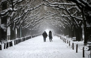 People walk in a park during a heavy snowfall in Tokyo February 8, 2014. REUTERS/Toru Hanai