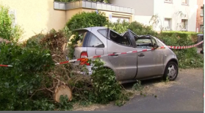 Aftermath of violent storms in Germany.  Six people are killed and 30 others seriously wounded in violent storms that swept Germany's most populous state late on Monday, felling trees, disrupting public transport and leaving some roads impassable.  (Photo grabbed from Reuters video)