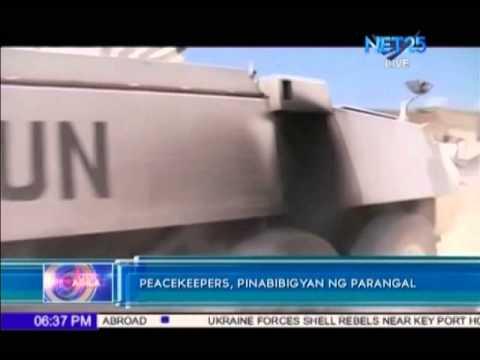 Senator Guingona wants to honor Filipino peacekeepers