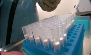 Canada announces the start of human testing of an experimental Ebola vaccine. (Photo grabbed from Public Health Ministry of Canada video/Reuters)