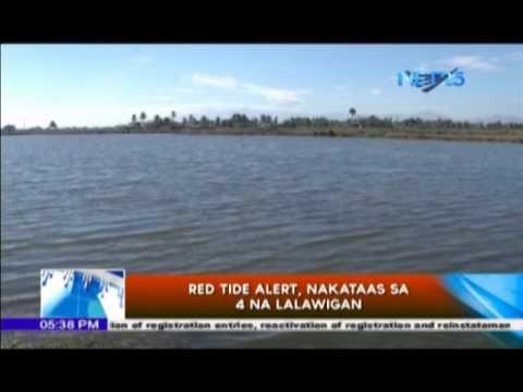 """Agila Probinsya – Babala ng """"red tide"""" sa ilang lalawigan"""