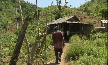 Farmers struggle to find a stable livelihood nearly a year after Typhoon Haiyan ripped through the central Philippines, destroying crops and millions of coconut trees. (Courtesy Reuters/Photo grabbed from Reuters video)