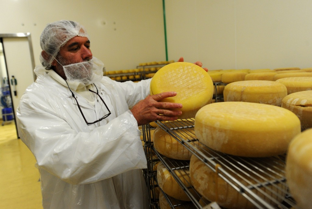 An employee of the Dairy Cooperative of the Basque Country (CLBP) controls the ripening process of various kinds of cow milk cheeses produced at the cooperative in Aldudes, southern France, on October 30, 2015. The Cooperative has raised over 340,000 euros through an Internet fundraising campaign to increase its independence from retail. AFP PHOTO / GAIZKA IROZ / AFP / GAIZKA IROZ
