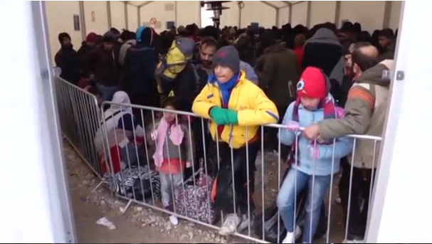 Migrants from the Middle East waiting behind bars at the border between Croatia and Serbia. (Photo courtesy: Reuters/Photo grabbed from Reuters video)