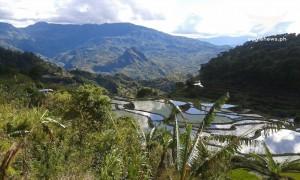 Mt. Mogao in Tadian, Mt. Province.  Photo taken by Erwin Pacardo (Eagle News Service)