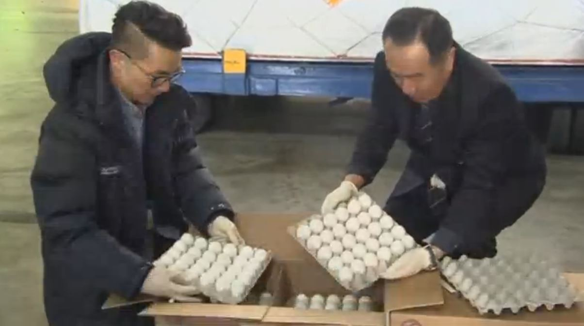 Imported eggs from the U.S. arrive in South Korea amid a worsening egg shortage caused by the country's biggest-ever bird flu outbreak. (Photo grabbed from Reuters video)