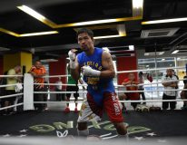 In this photo taken on September 29, 2016, Philippine boxing icon Manny Pacquiao trains at a gym in Manila, ahead of his November 6 bout with Mexican boxer Jessie Vargas.     Pacquiao and British fighter Amir Khan confirmed separately on February 26, 2017 that they would face each other on April 23 after weeks of conflicting reports.  / AFP PHOTO / TED ALJIBE