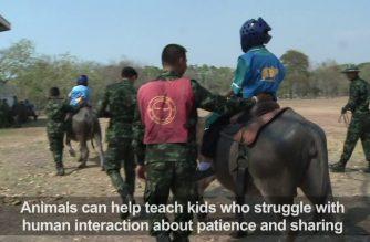 Buffalo soldiers help Thai kids combat autism