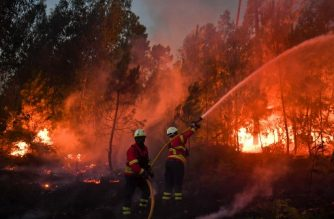 Firefighters tackle a wildfire in Macao on August 17, 2017. / AFP PHOTO / PATRICIA DE MELO MOREIRA