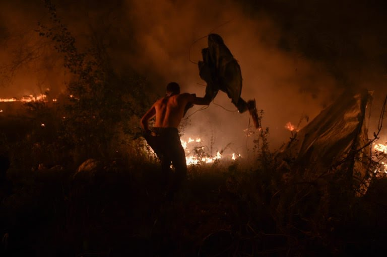 30 killed as wildfires rage in Portugal and Spain