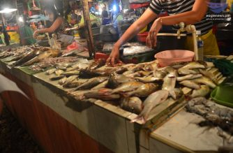 File photo of different fish being sell in the market