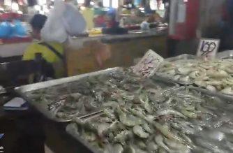Honda Bay sa Puerto Princesa City, Palawan, positibo pa rin sa red tide toxin